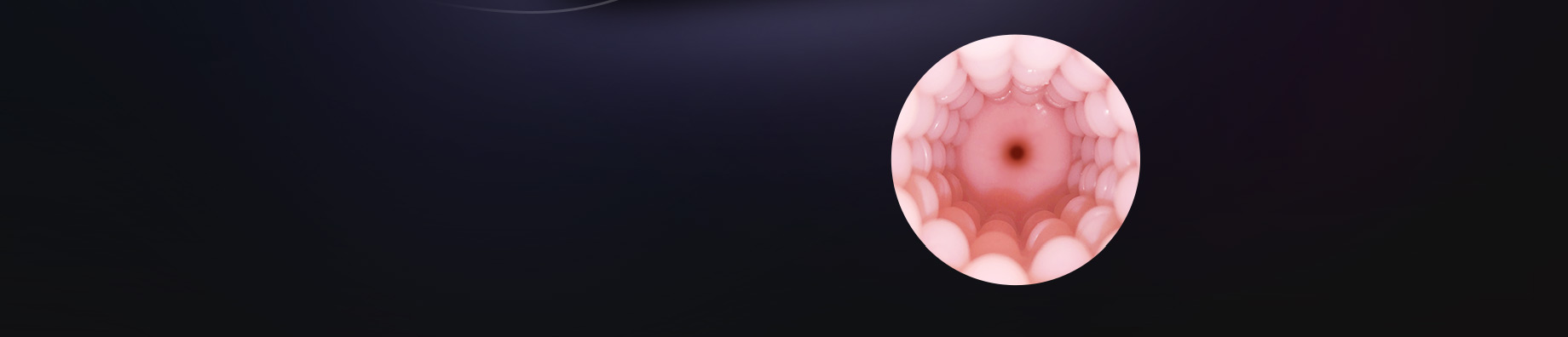 Realistic Artificial Vagina.